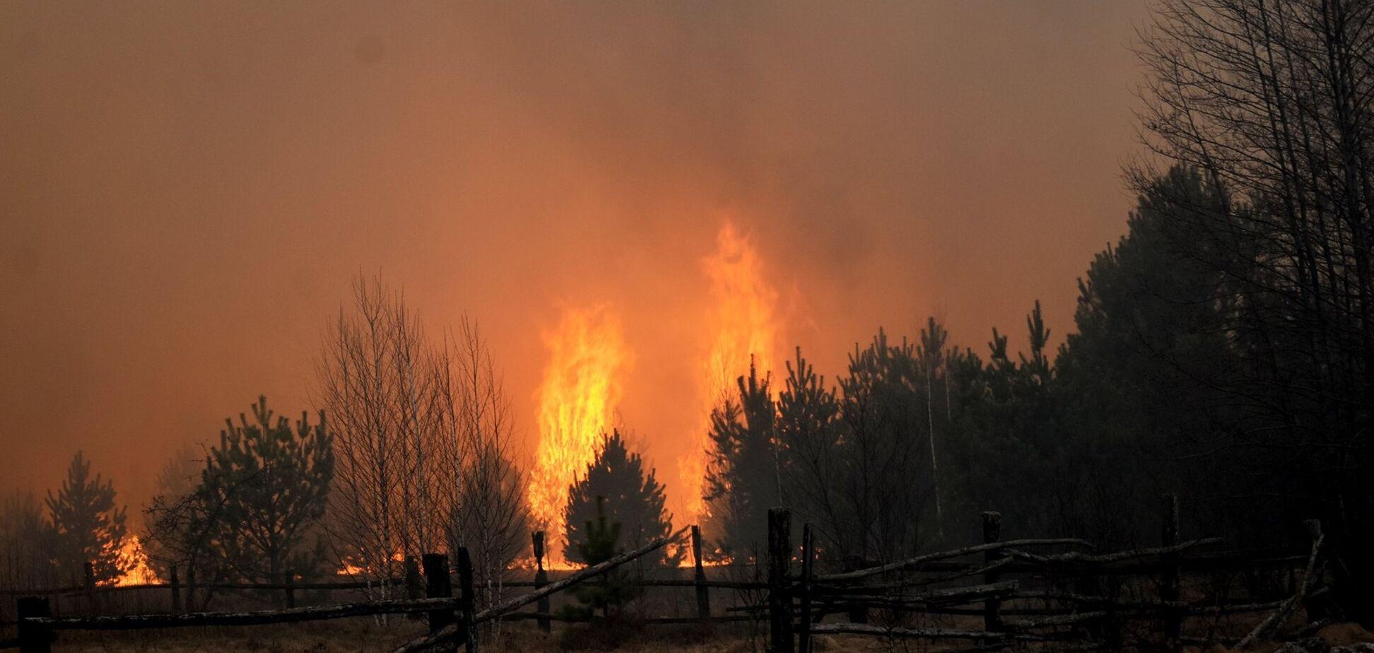 Такого не було 24 роки: з'явилися подробиці про наймасштабніші пожежі на Житомирщині