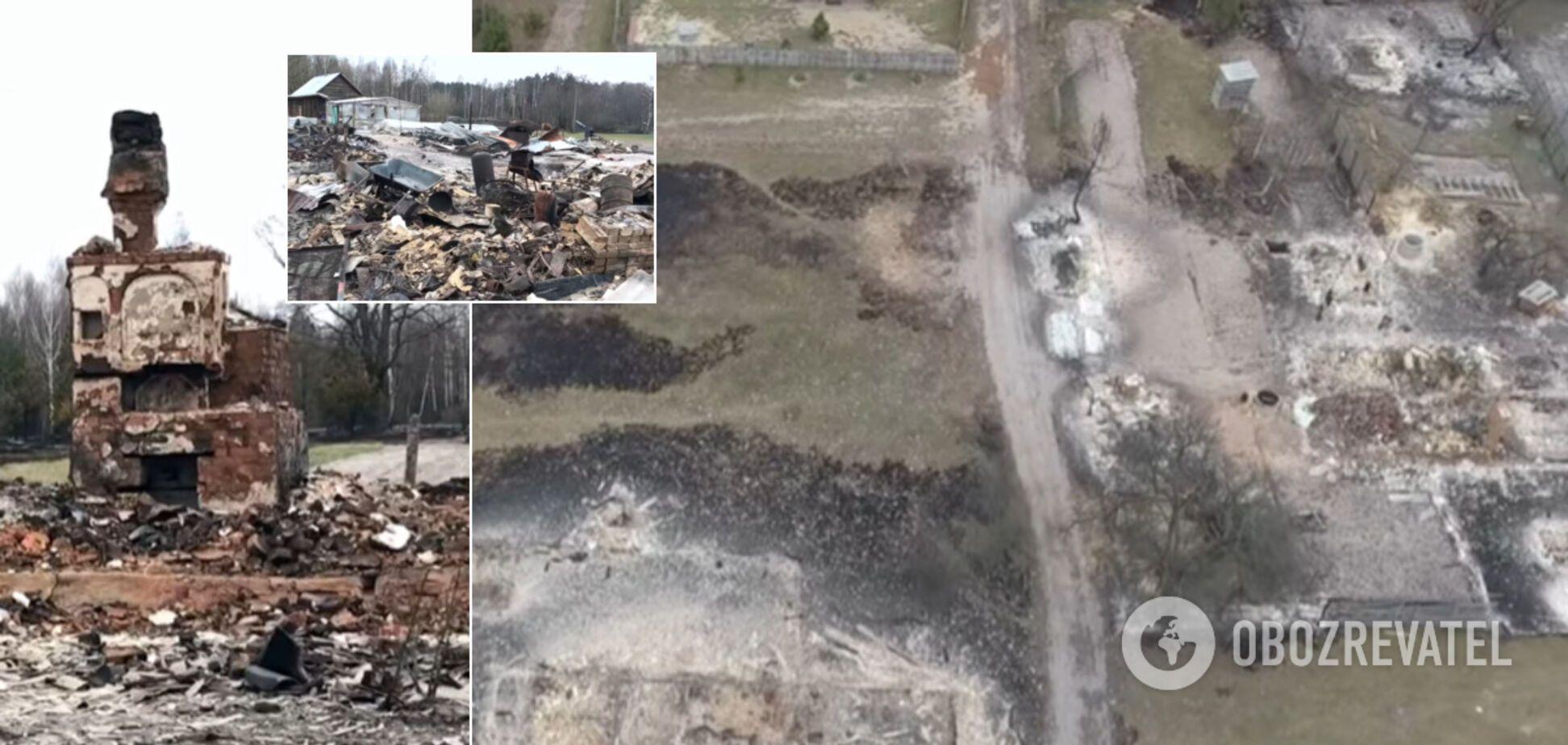 Журналіст показав жахливі наслідки масштабних пожеж на Житомирщині. Відео