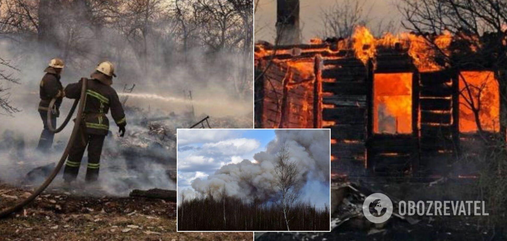 Пожары на Житомирщине: в ОГА рассказали, как помогут погорельцам
