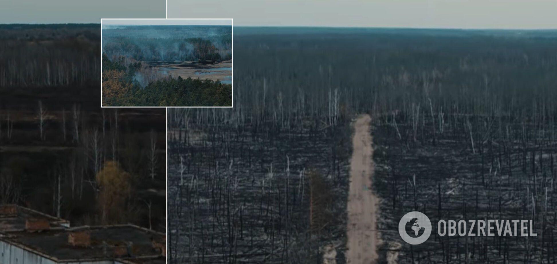 Український режисер зняв із дрона моторошні наслідки пожеж у Чорнобилі