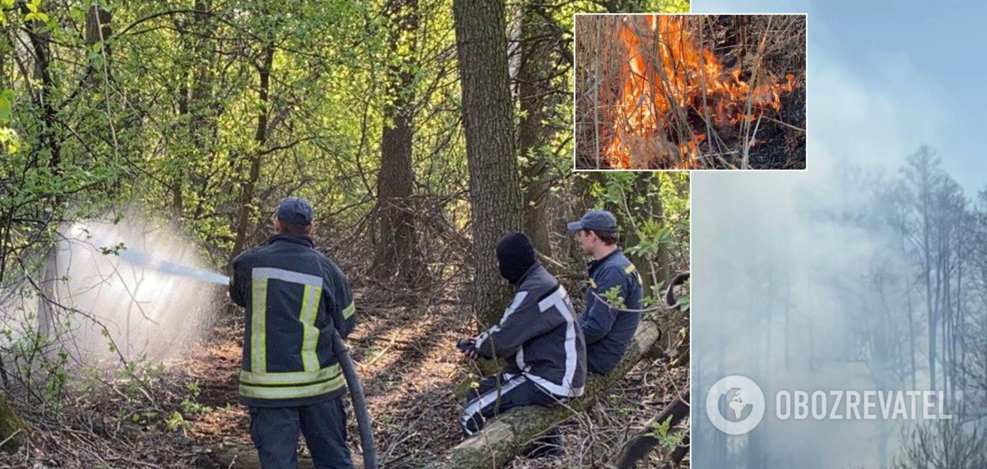 Під Києвом палій влаштував потужну пожежу: гасять рятувальники і місцеві жителі. Фото і відео вогненної стихії