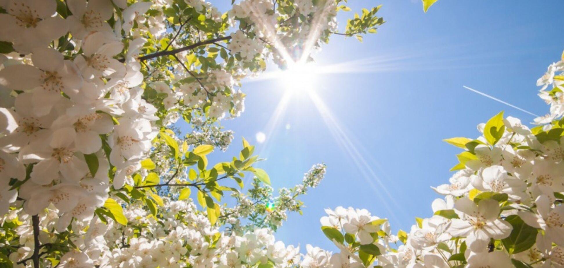 Прогріє до +21! Синоптики порадували теплим прогнозом в Дніпрі