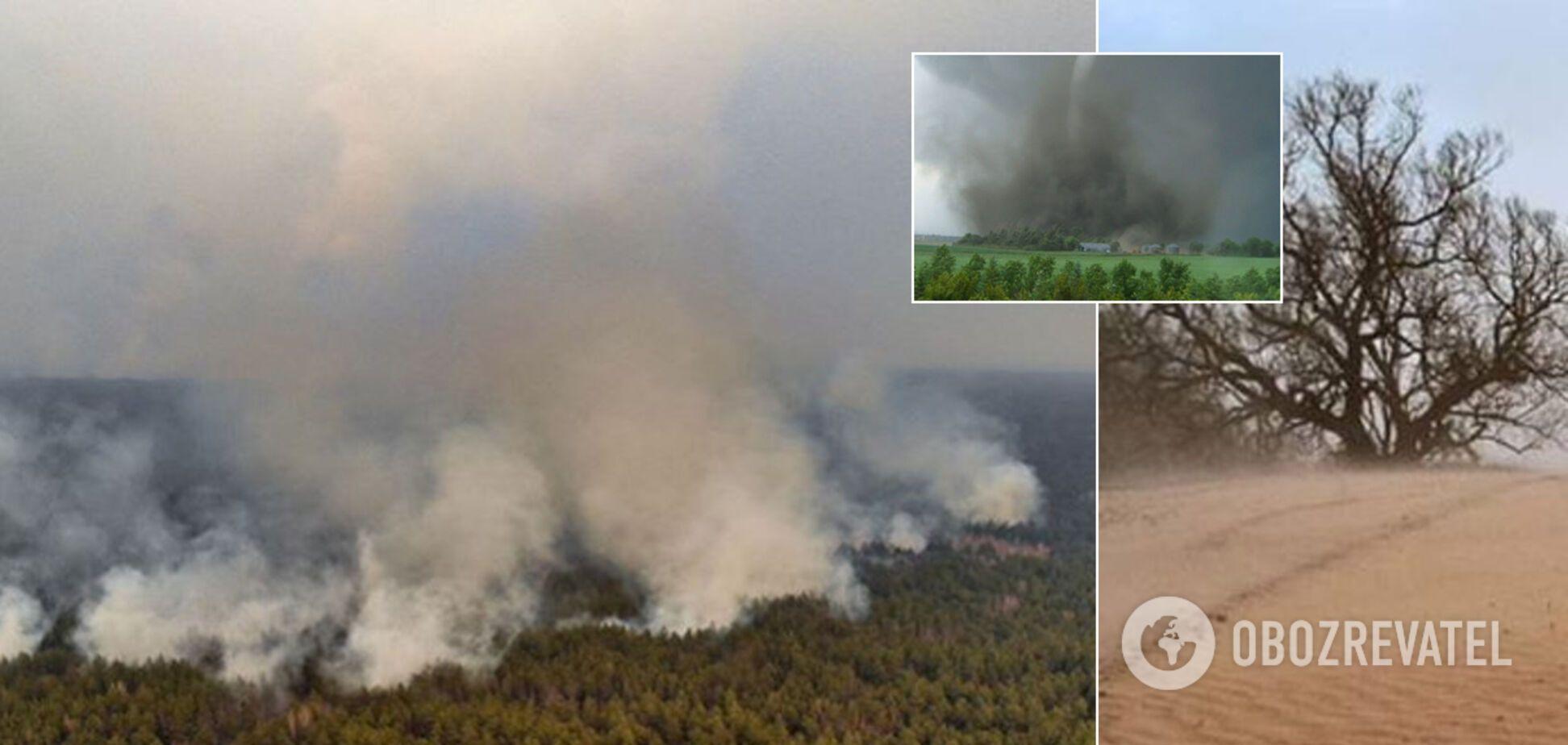 О пальмах, двойном урожае, пустыне и бурях в Украине. Интервью с синоптиком об аномалиях погоды