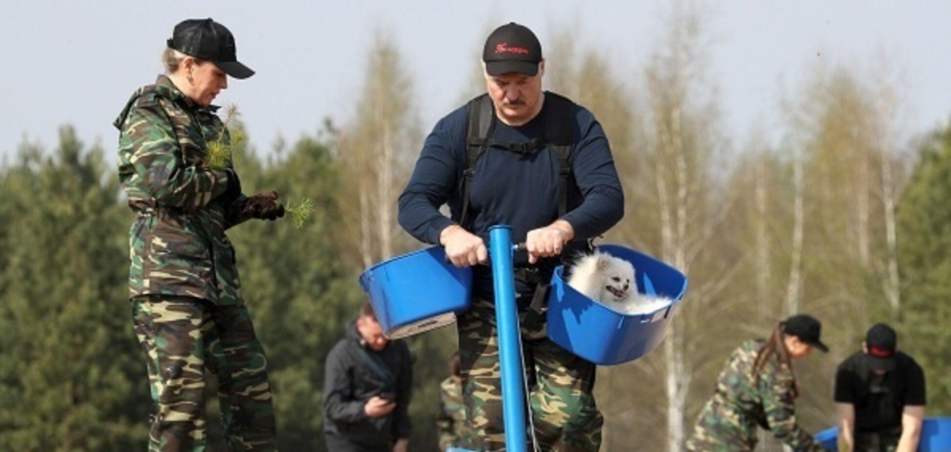 Лукашенко знову відмовився вводити карантин: нам це не треба!