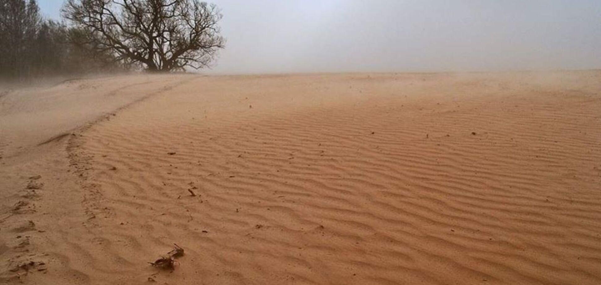 Пилові бурі перетворюють поля України на пустелю: синоптик пояснив, хто винен