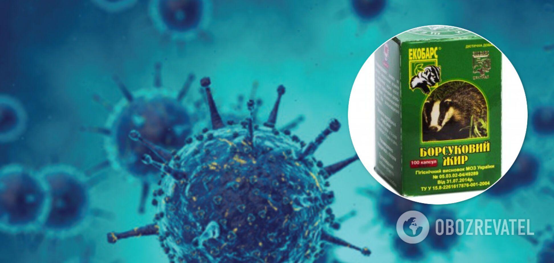 Борсуковий жир при COVID-19: Комаровський розвінчав користь шарлатанського засобу
