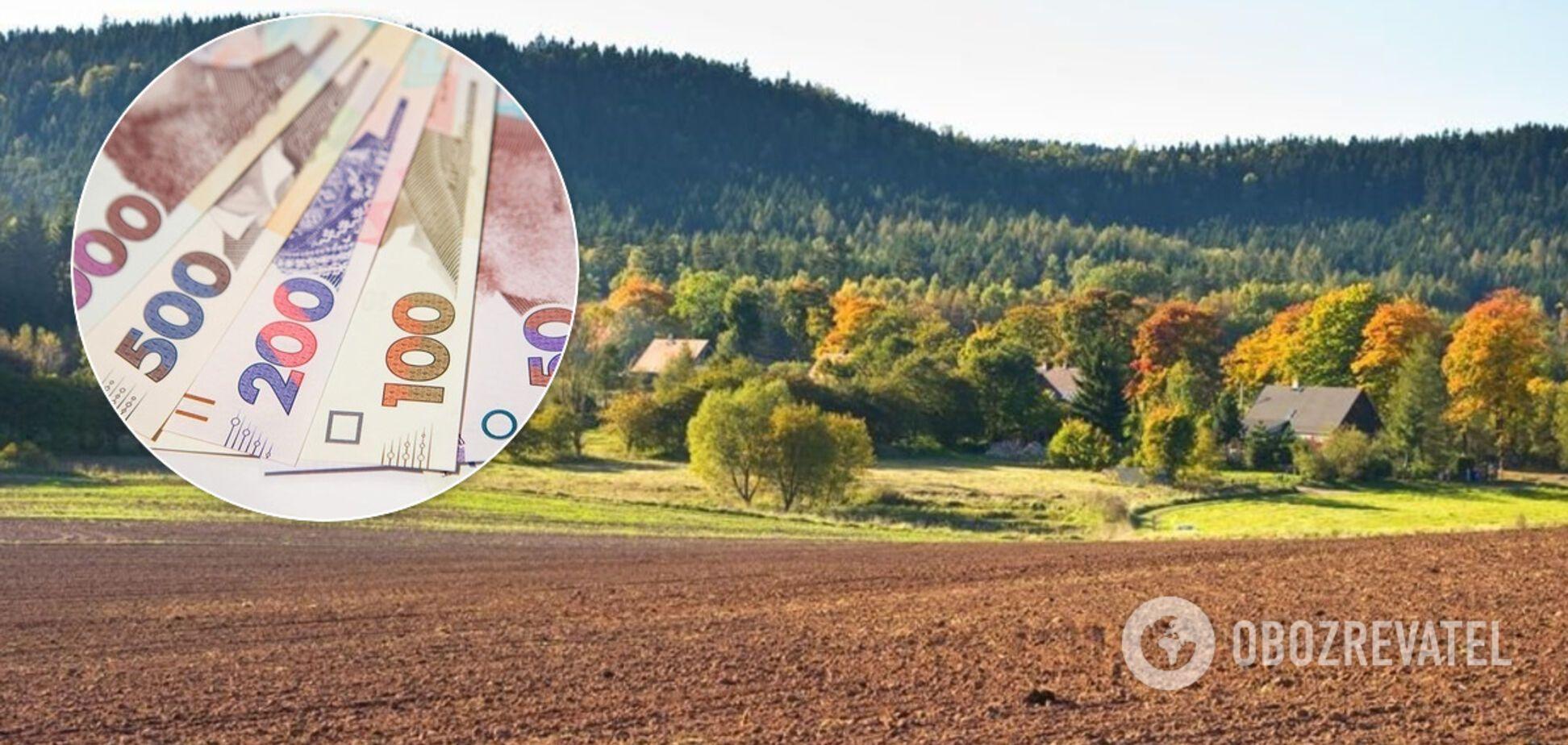 Аренда земли в Украине: где выгоднее всего сдавать свои гектары