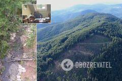 Топ-чиновники гослесничеств на Закарпатье устроили масштабную вырубку леса. Видео