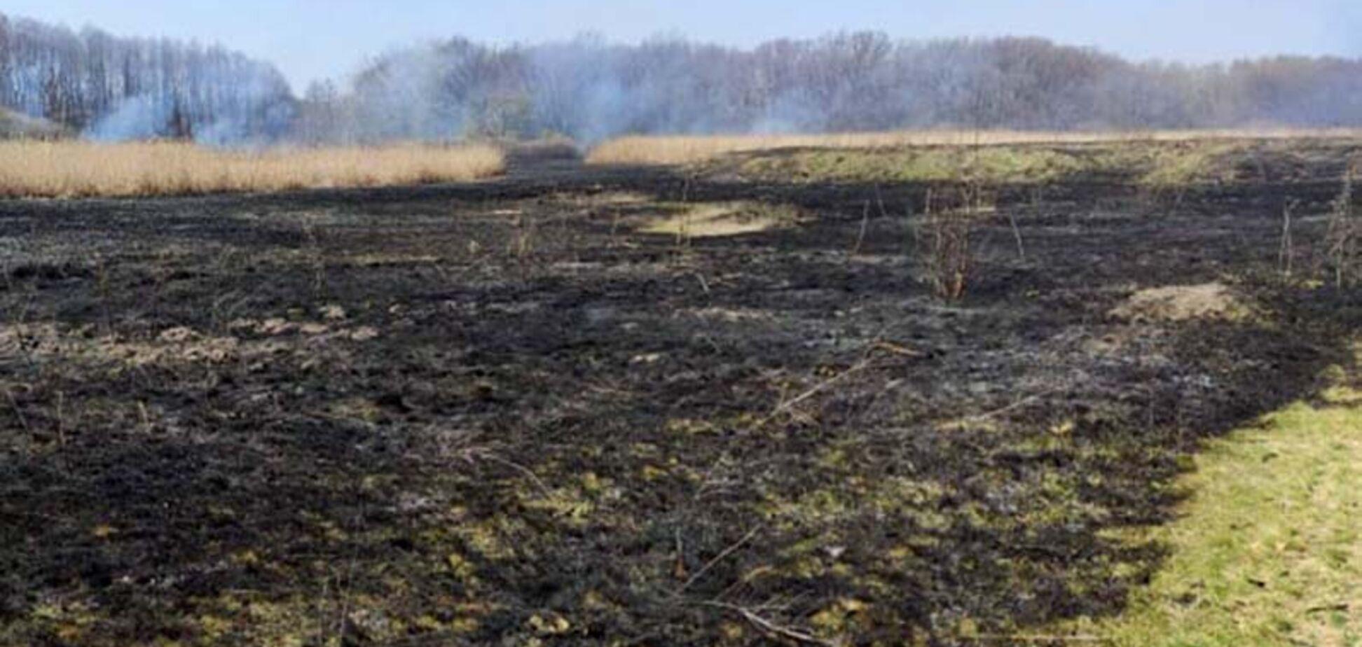 На Дніпропетровщині масово горять поля: за добу вогонь знищив 20 гектарів. Фото