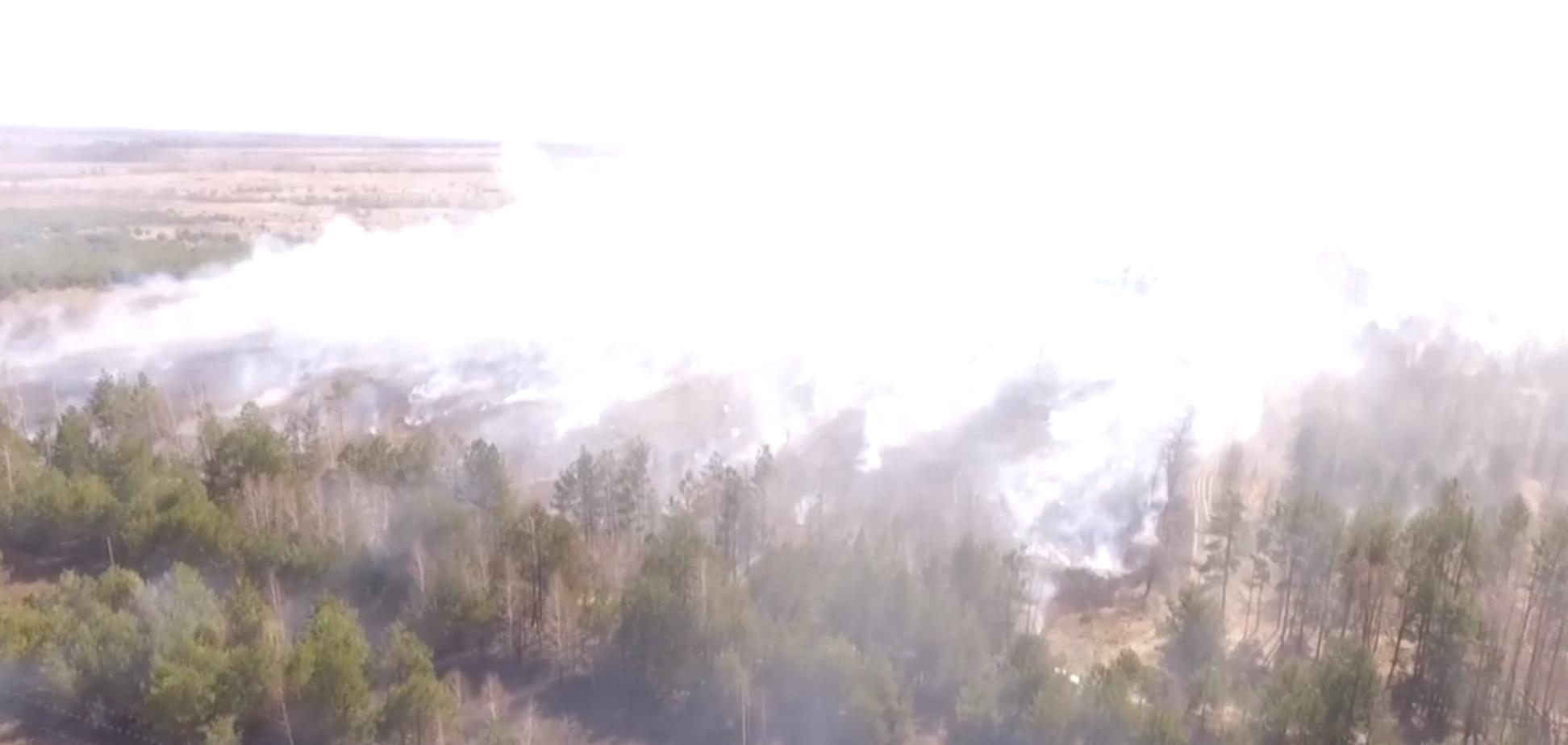Пожежа у Чорнобильській зонівідчуження
