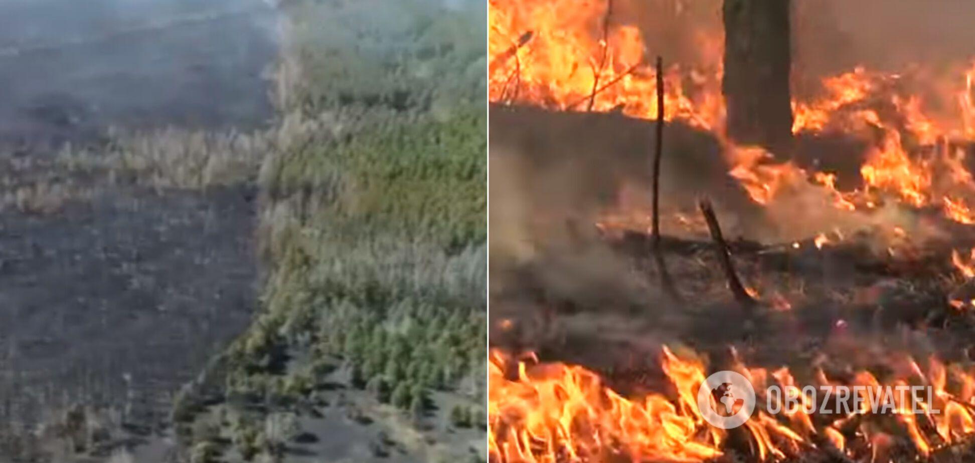 У Чорнобильській зоні пожежа спалахнула з новою силою