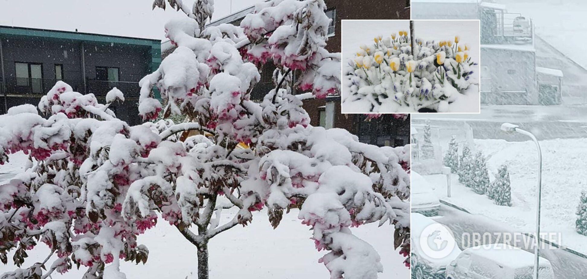Европу завалило снегом: циклон движется в Украину. Фото, видео и карты