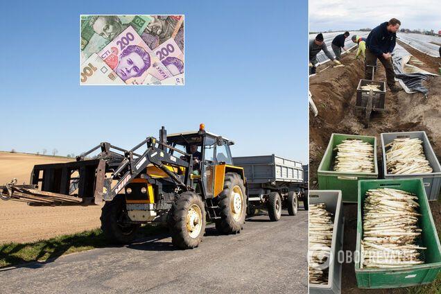 Українці працюють у Європі по 12 годин у бруді та за копійки: чому Захід загнеться без заробітчан
