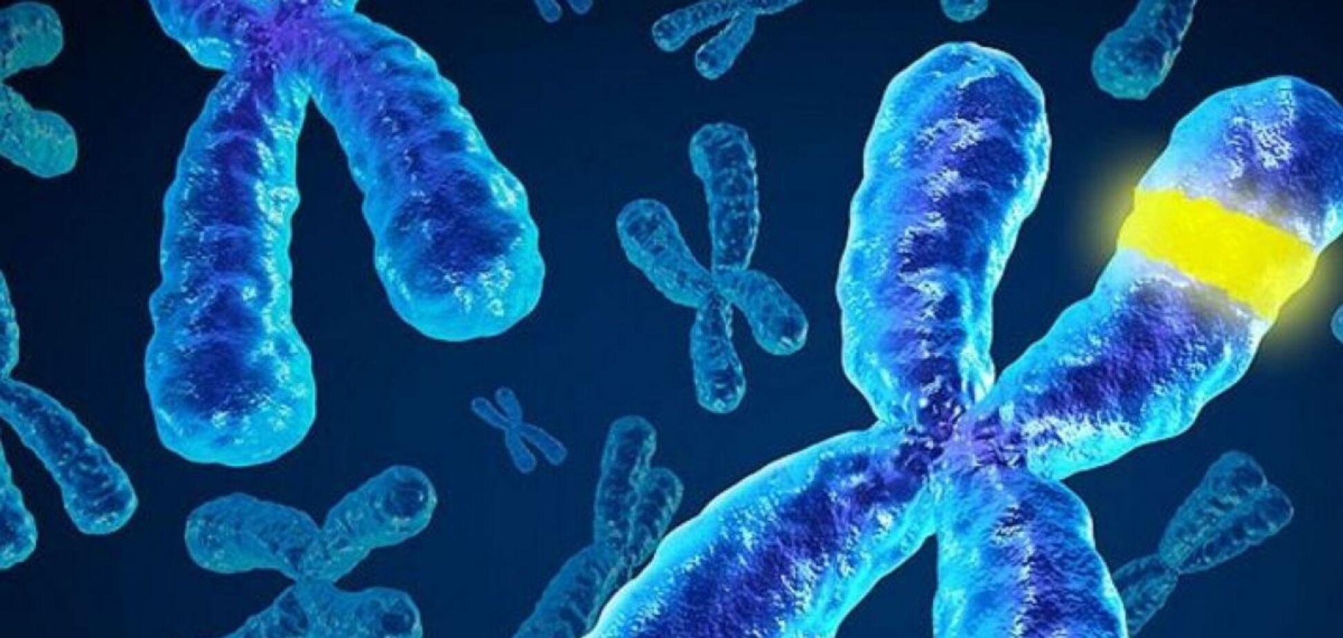 Хромосомы: интересные факты