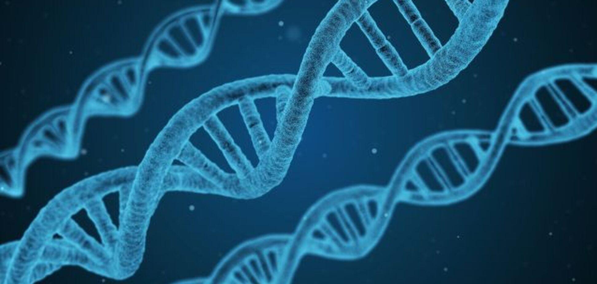 Наука генетика: основные понятия