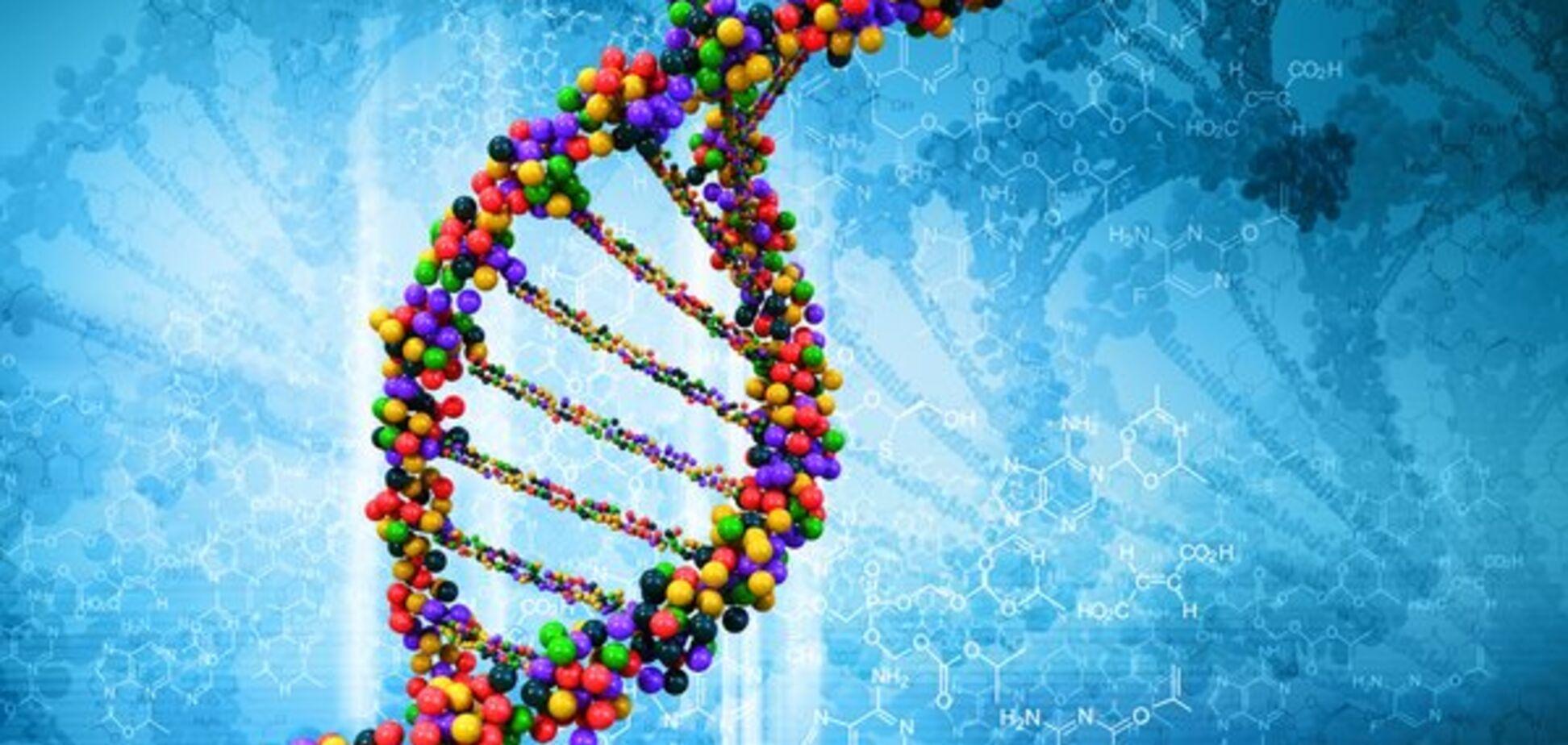 ДНК и гены: строение и функции