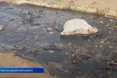 В Крыму популярный пляж превратился в черную жижу: фото экологического бедствия