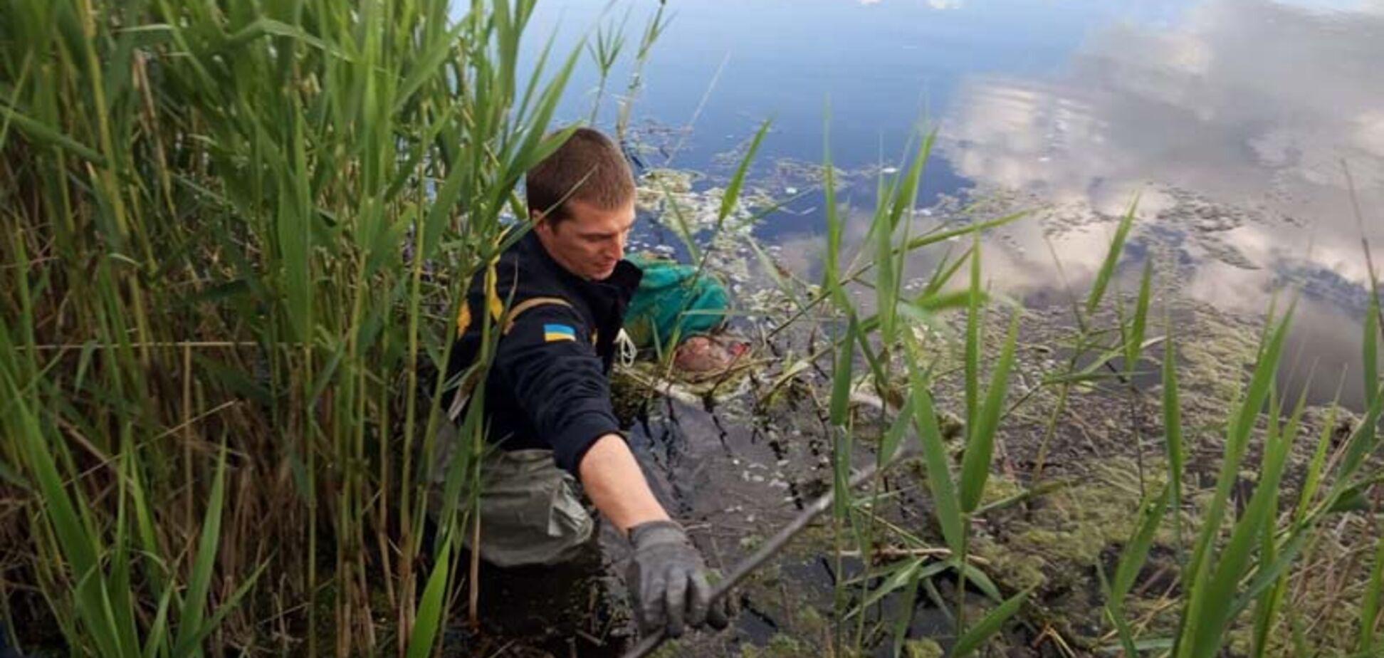 Під Дніпром в водоймі знайшли тіло зниклої жінки. Фото