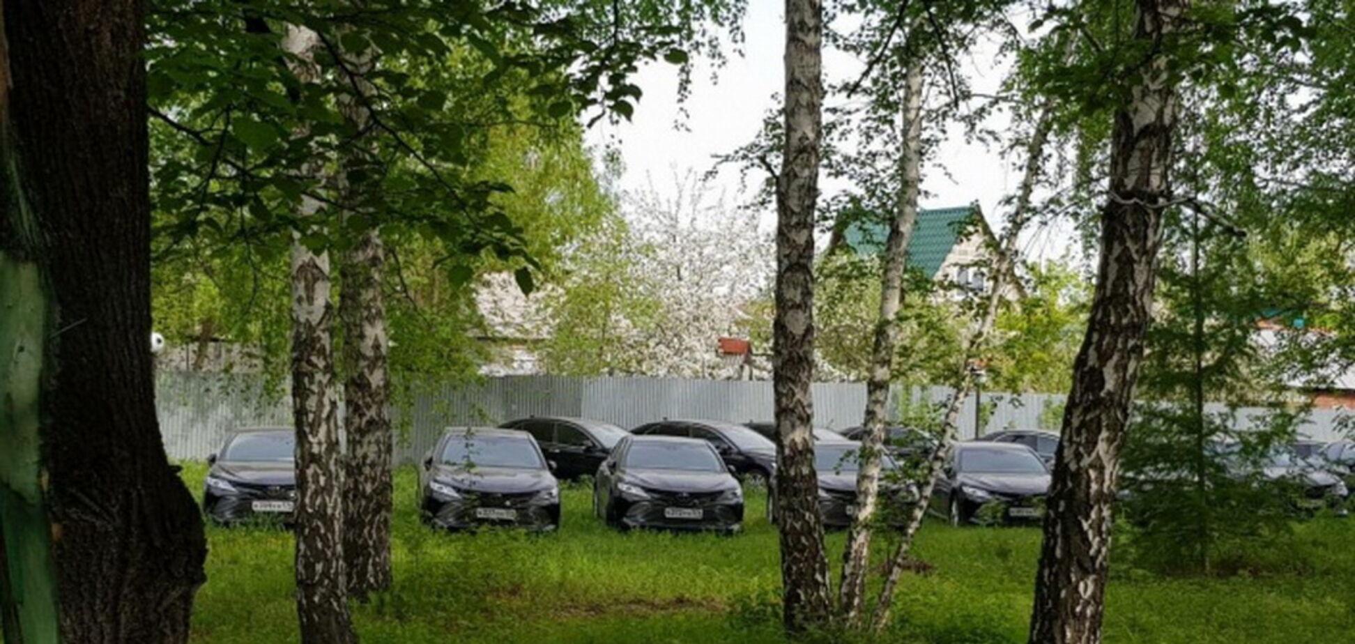 Пів сотні нових Toyota Camry кинули в лісі