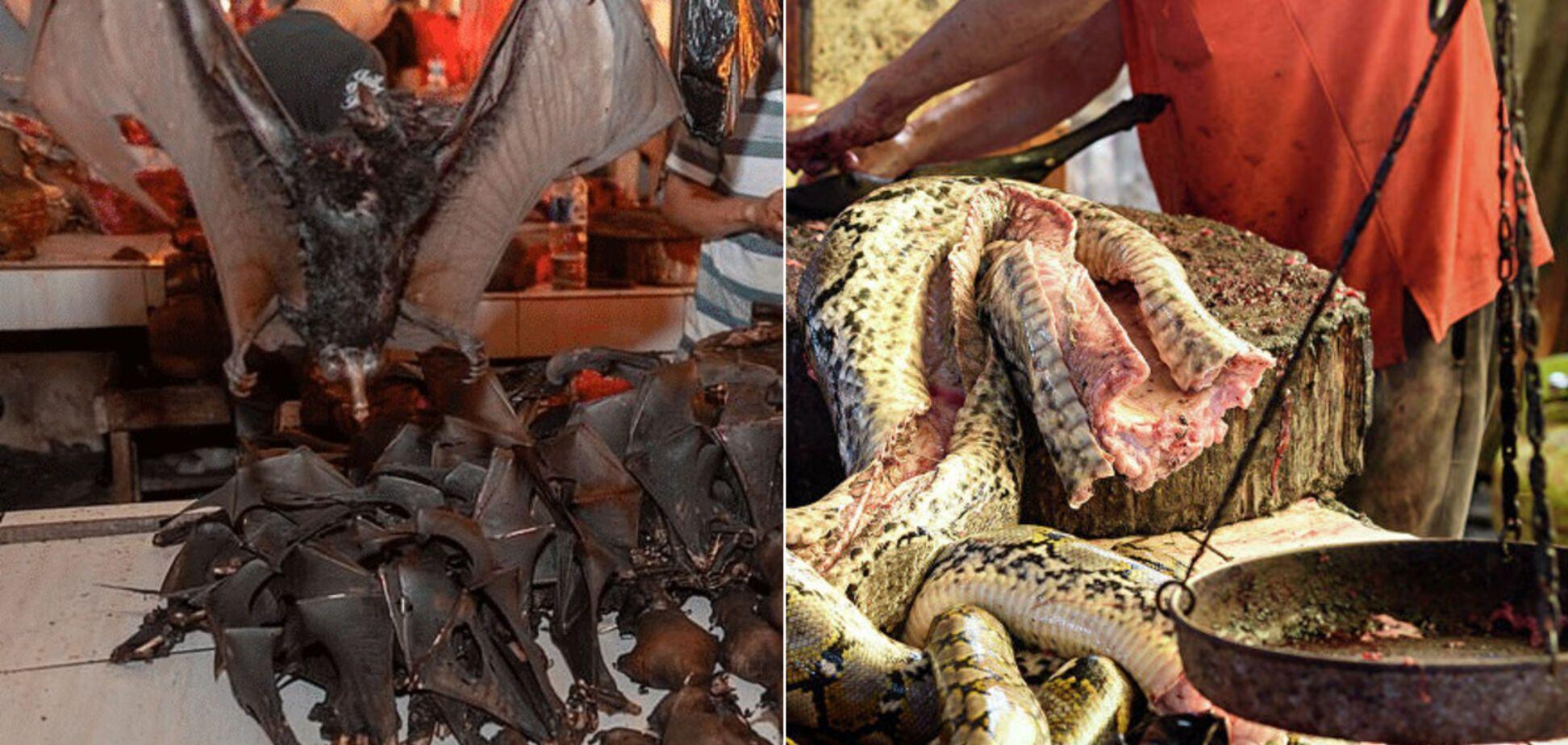 Ели мышей и волков: в китайском Ухане на 5 лет запретили продавать и есть диких животных