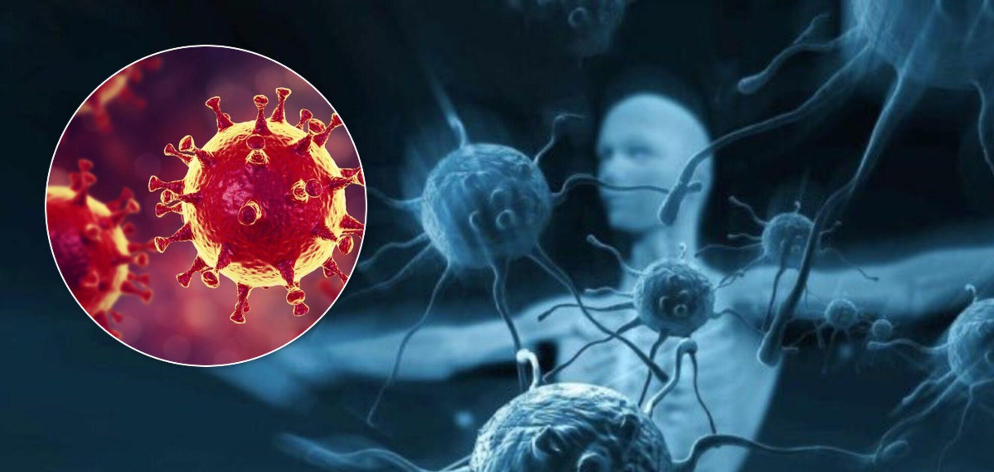 Выяснилось, что иммунитет к коронавирусу может длиться только шесть месяцев