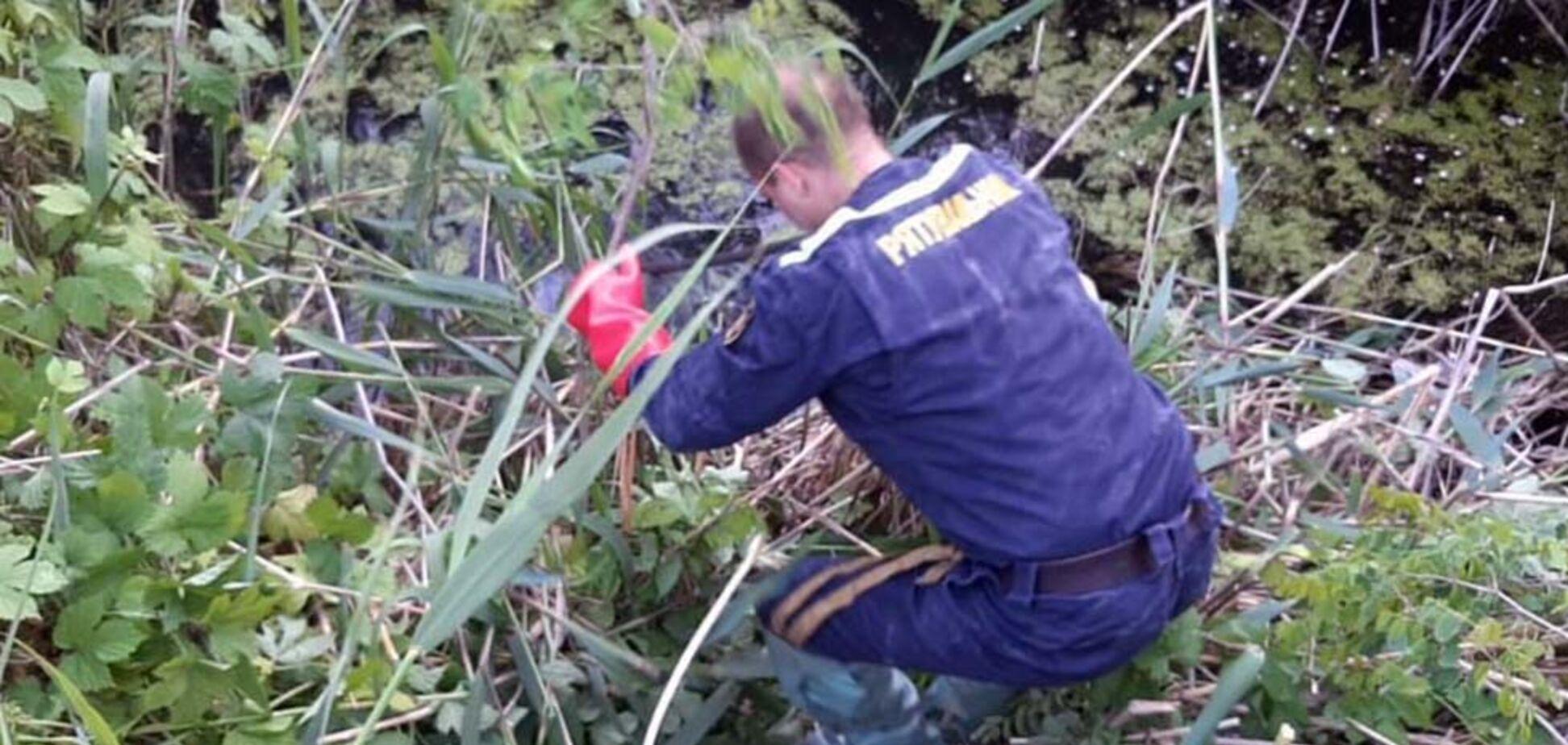 У Дніпрі рятувальники витягли з водойми тіло чоловіка. Фото 18+
