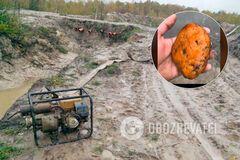 Копатели янтаря посмеялись над полицией: нелегалы из Ривненской области опубликовали дерзкое видео