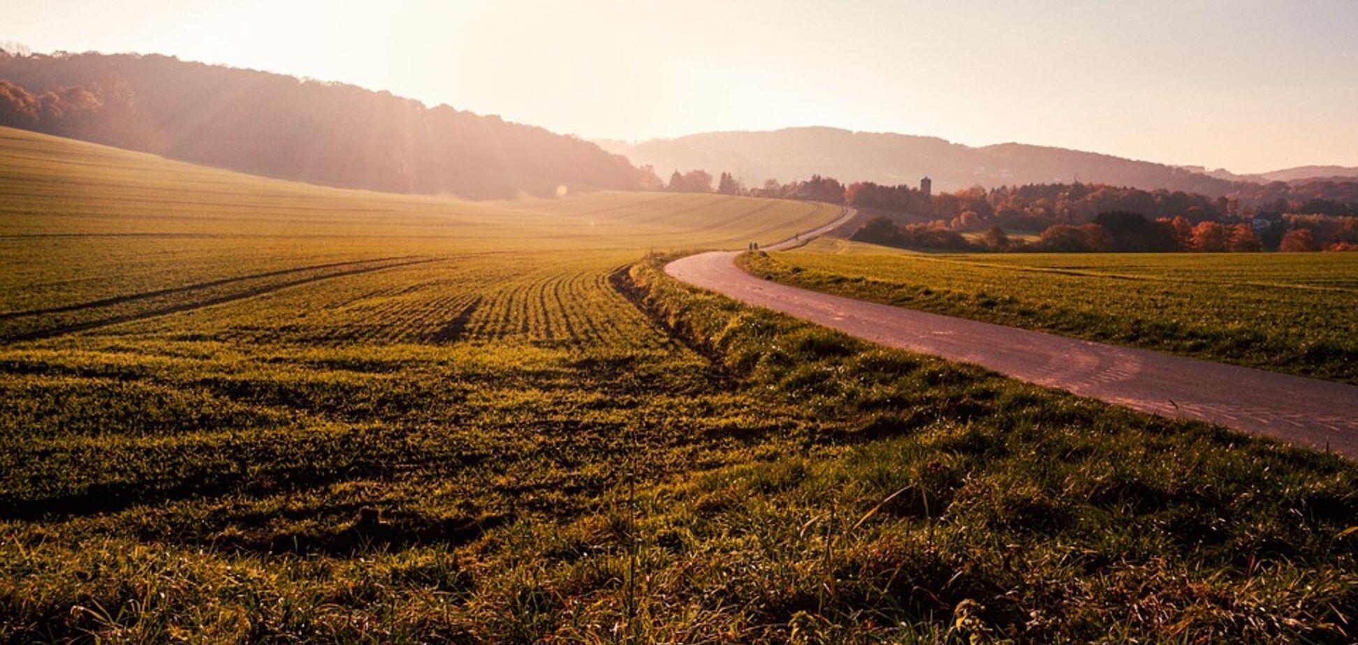 В Житомирской области в этом году зарегистрировали 25 тысяч земельных участков