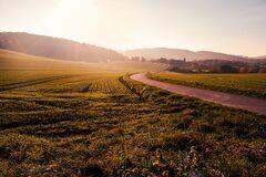 У Житомирській області у цьому році зареєстрували 25 тисяч земельних ділянок