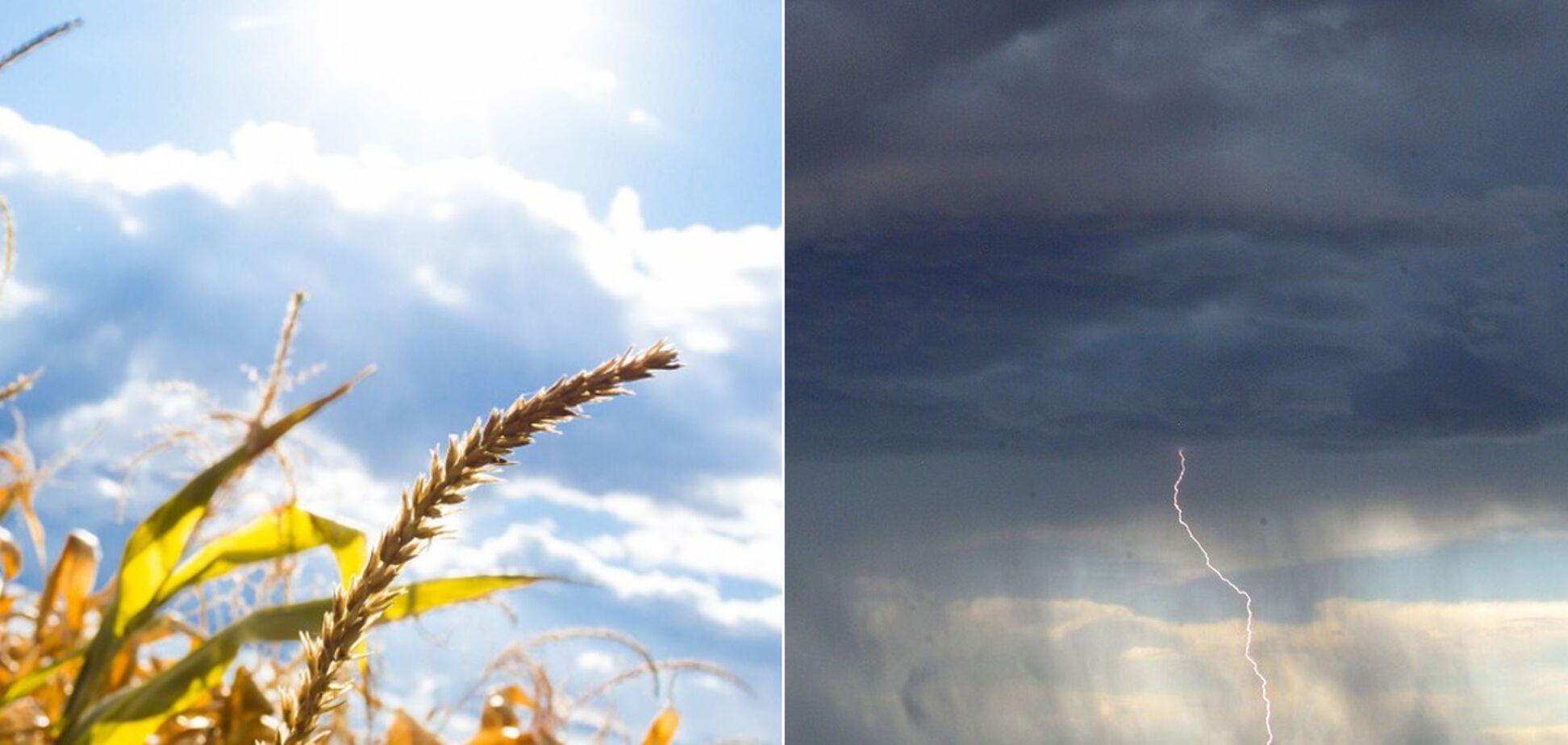 Когда потеплеет в Украине: синоптик дал прогноз и предупредил о скачках температуры