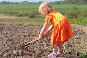 Над детьми-сиротами годами издевались на Днепропетровщине