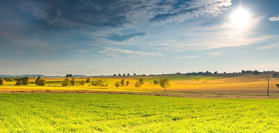 Синоптик спрогнозував погоду в Україні на перший місяць літа