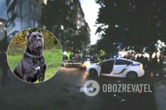 На Ривненщине полицейские подстрелили собаку и ее хозяина. Фото 18+