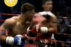 Український боксер переміг убивчим нокаутом
