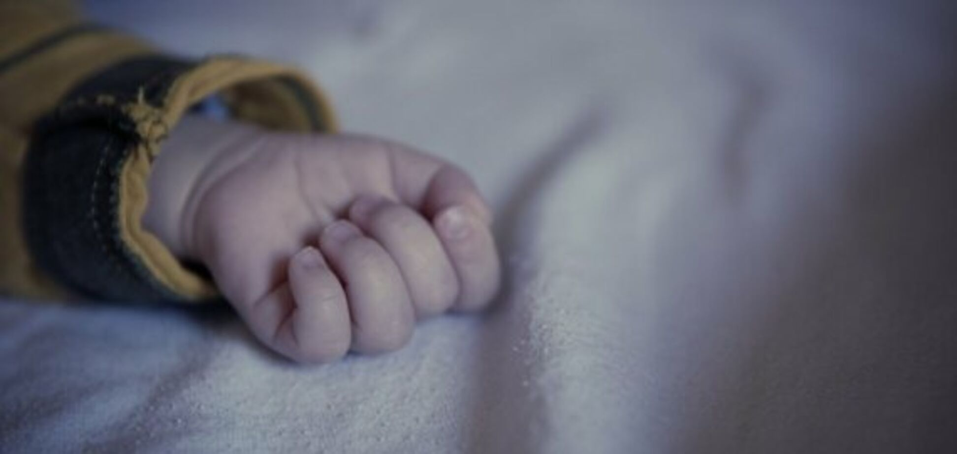 У Кривому Розі в лісосмузі знайшли коробку з немовлям