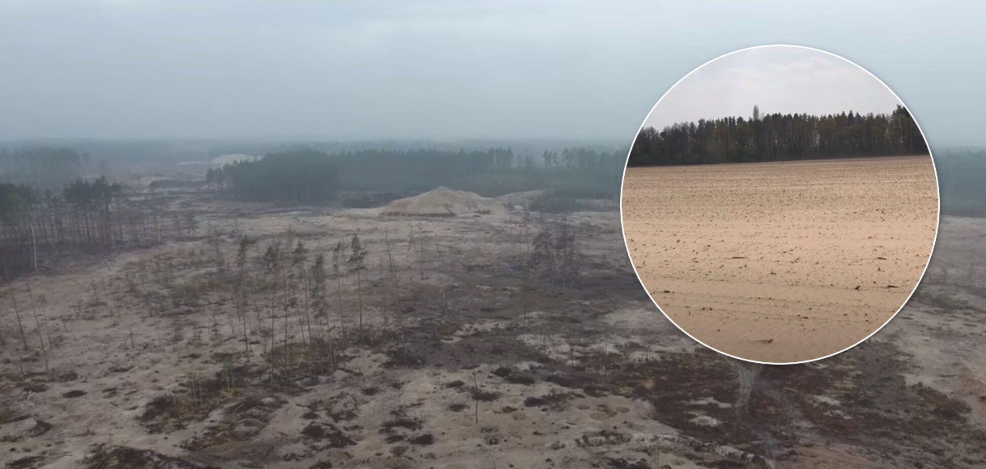 'Справжні дюни': на Рівненщині знайшли джерело піщаних бур, які накрили Україну. Відео