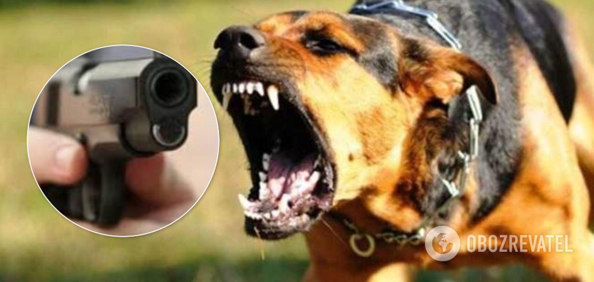 В Одесі поліцейські стріляли в собаку біля дитячого майданчика. Відео 18+