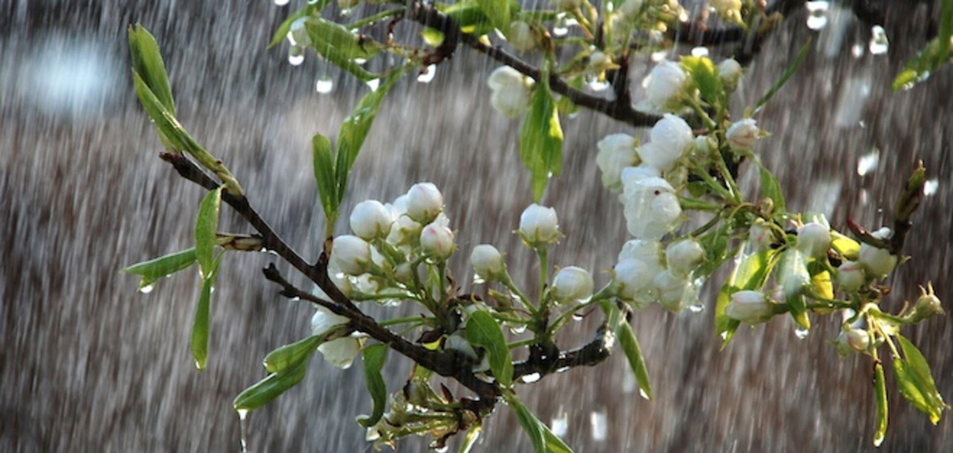 В Украине снова испортится погода: зальет дождями