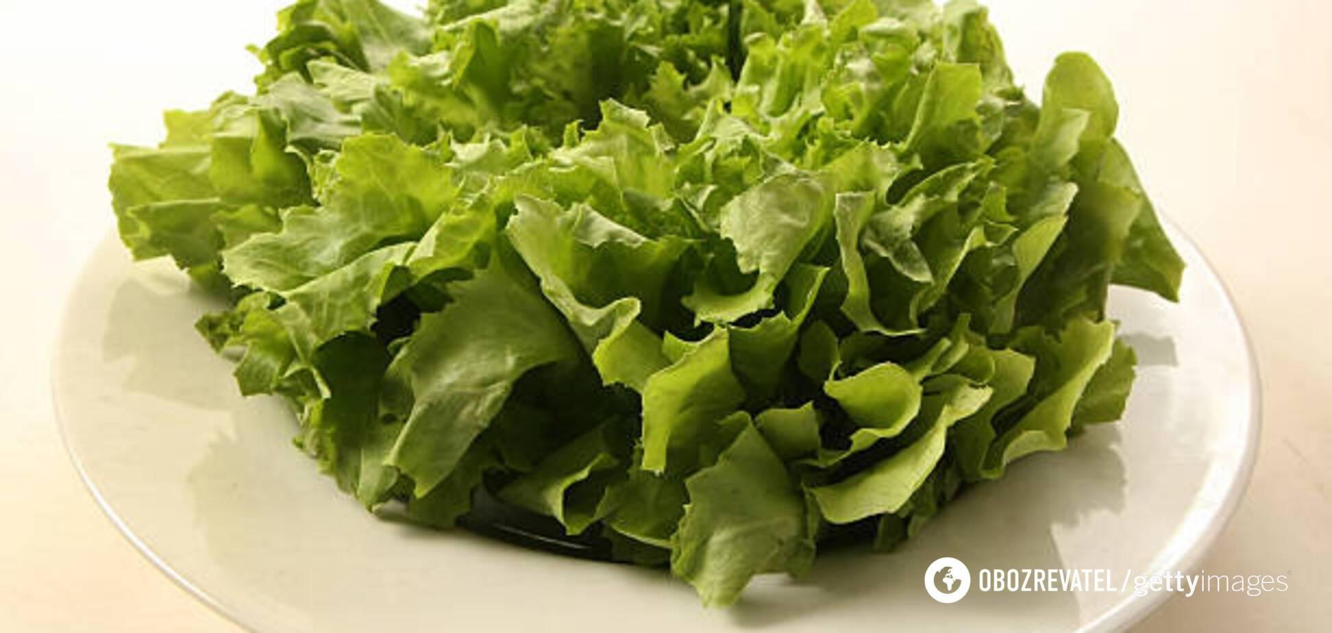 Вітаміни, а не нітрати: яку зелень можна купувати в травні