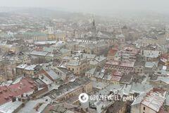 Во Львове в начале мая выпал снег: фото и видео бури