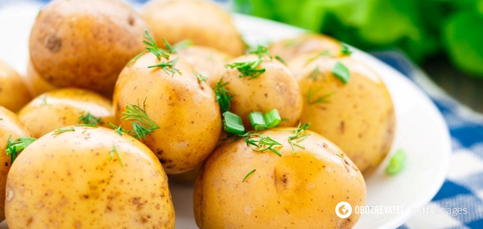 5 рецептів дуже смачних страв з молодої картоплі