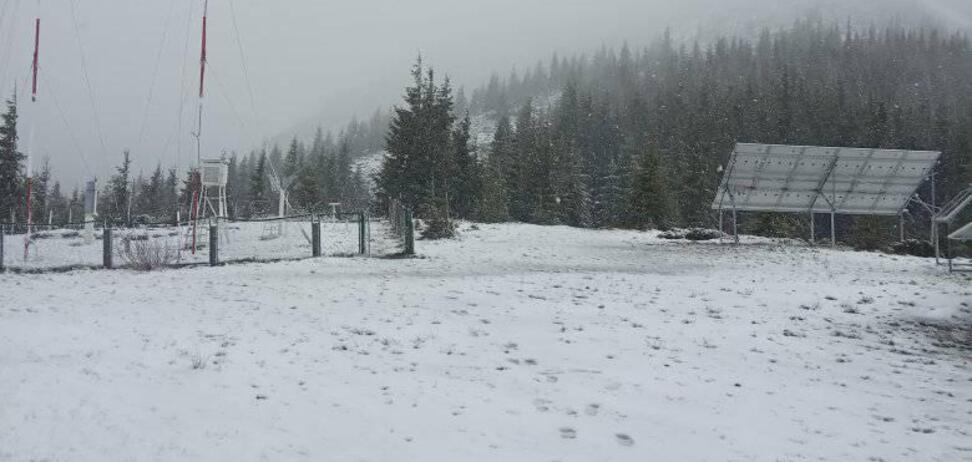 Карпати в останній день весни засипало снігом: фото та відео вразили мережу