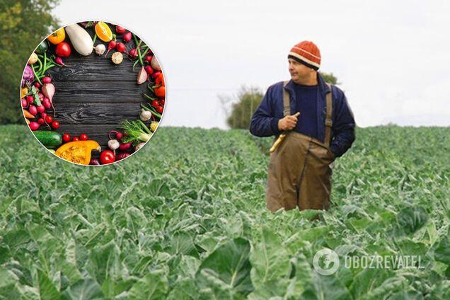 Фермери зможуть продавати продукцію онлайн