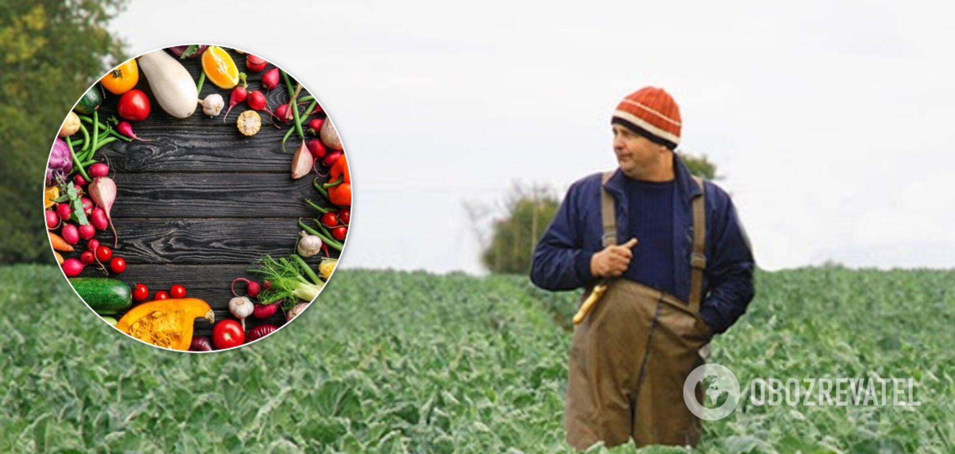 Фермеры смогут продавать свои продукты онлайн: раскрыто идею Кабмина