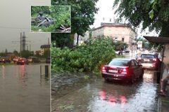 Во Львове мощный ураган повалил десятки деревьев: погибла женщина. Фото и видео непогоды