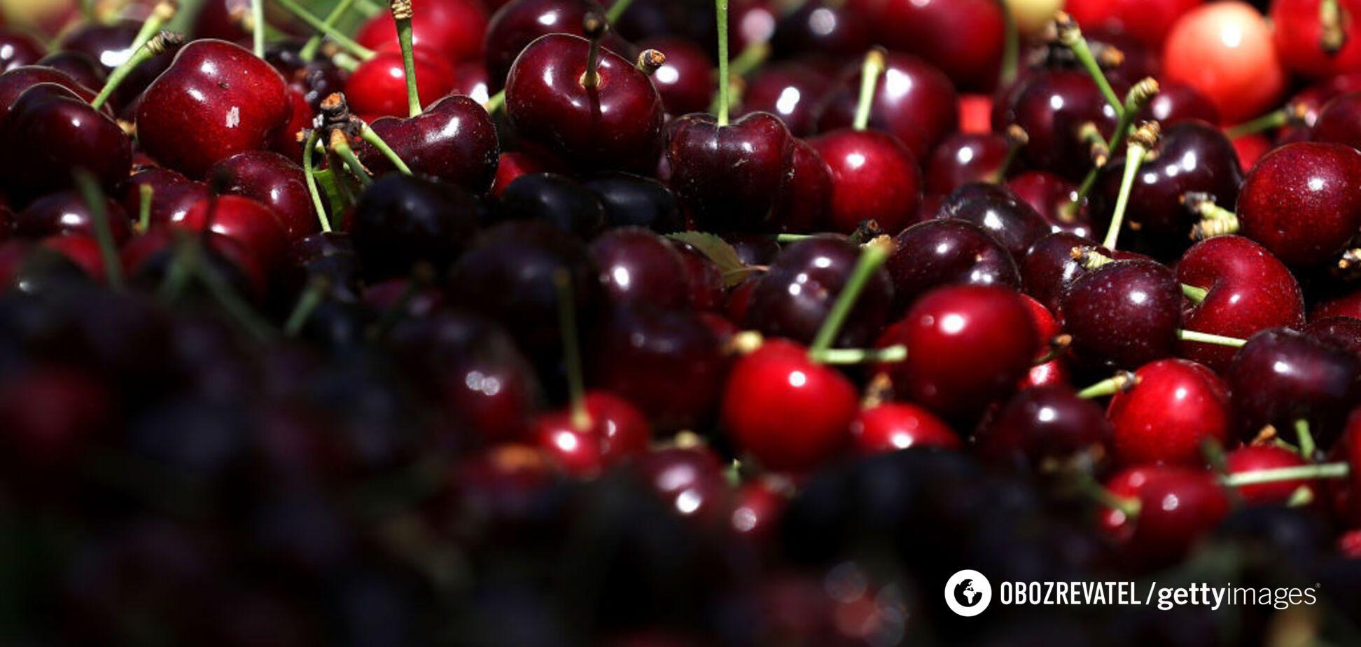 Что полезнее – черешня или вишня: отвечают диетологи