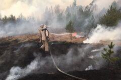 Экоактивисты проигнорировали пожары в Чернобыле, потому что за это не платили, – политолог