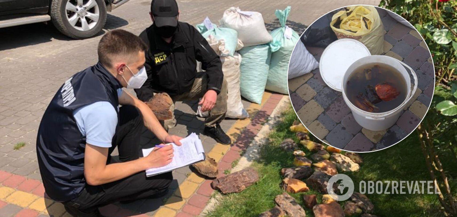 На Рівненщині вилучили майже тонну награбованого бурштину на 30 млн. Фото