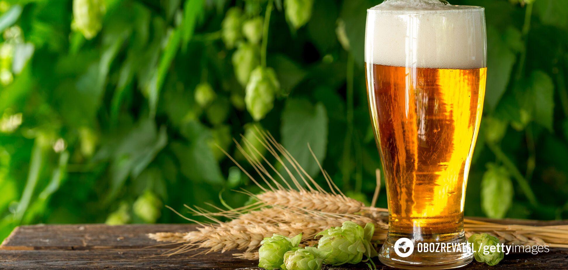 Розкрито користь пива для здоров'я: результати досліджень