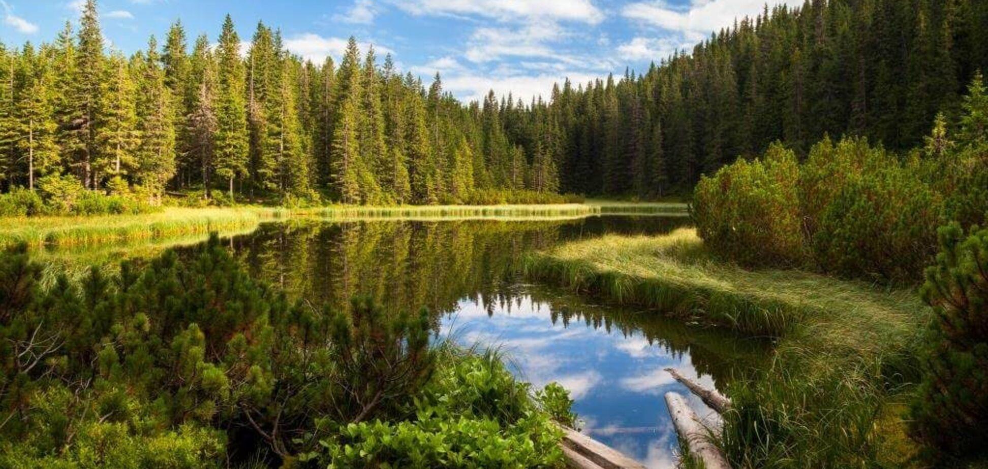 Топ-10: самые красивые и загадочные озера Украины